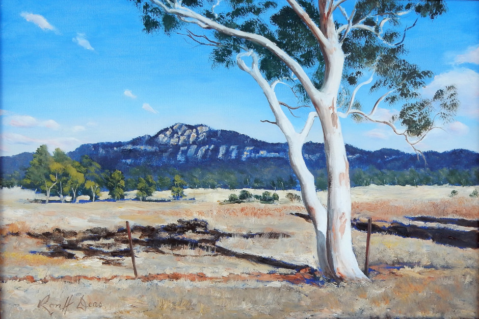 The White Gum, Bylong